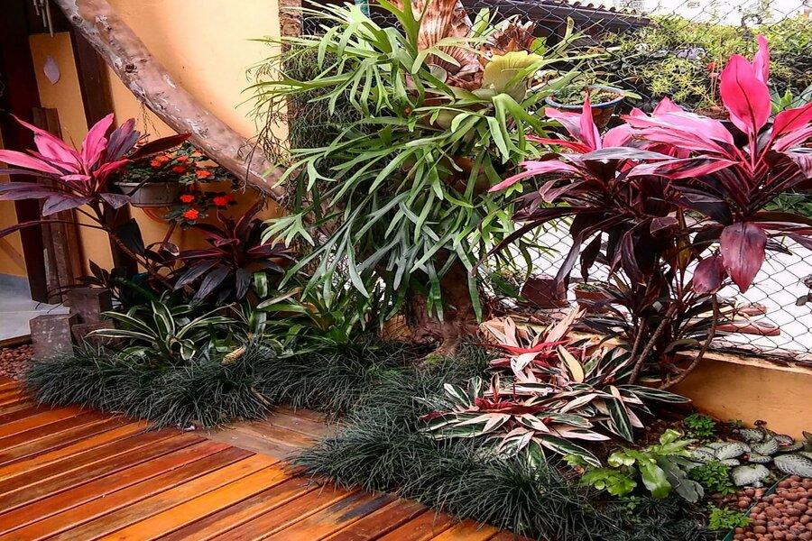 A escolha das plantas deverá ser feita com base nas características da sua varanda em termos de incidência solar, vento e materiais da parede e piso