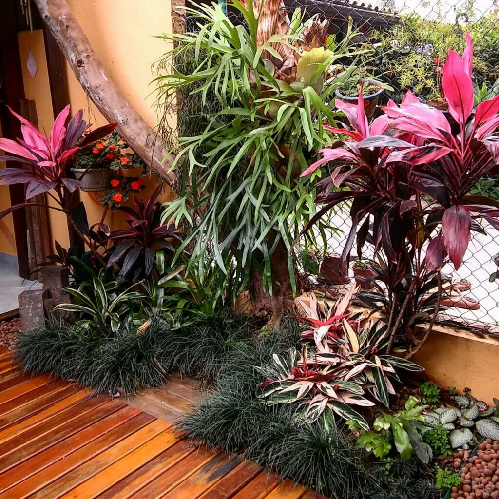 Diversos vasos de plantas em um jardim
